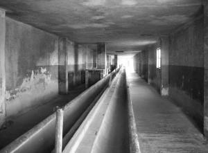 _056 AUSCHWITZ II Birkenaua
